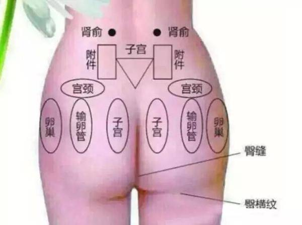 20岁女生怎么保养皮肤的方法,女人预防衰老的秘诀