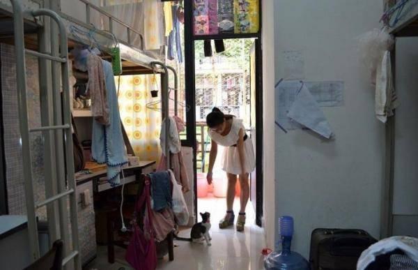 大学女生宿舍实拍图片,女生寝室生活照,女生在寝室干什么