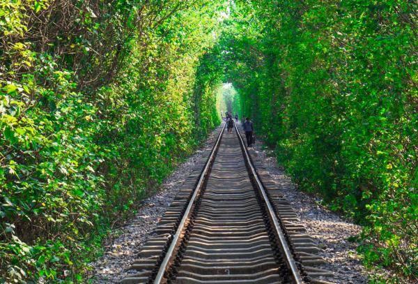 南京江宁爱情隧道图片介绍,南京爱情隧道几月去好